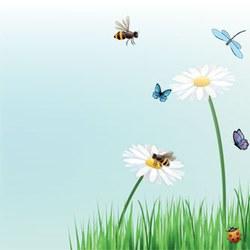 abeillessite